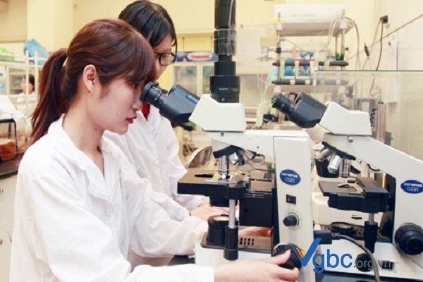 Dược sĩ Đại học làm gì? Tìm hiểu việc làm của Dược sĩ Đại học